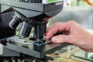La OMS marca el camino para asegurar sistemas de salud sostenibles