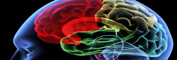 redes sociales cambios cerebro