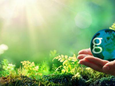 Compromiso de AESEG con el medio ambiente